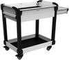 MultiTek Cart 2 Drawer(s) -- RV-NH33B2F002L3B -Image
