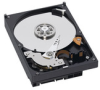 Western Digital Caviar Blue Internal Hard Drive 1TB