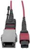 MTP/MPO Parallel Optics Base-8 Migration Fiber Adapter, Polarity A to B, 12 Fiber, 40 / 100 GbE, OM4 M/F, Magenta, 8 in. -- N846-08N-A2B