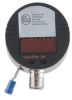 Continuous level sensor with overspill monitoring -- LK1224
