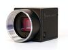 Flea®3 (IEEE 1394b) CCD Camera -- FL3-FW-03S3M