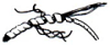 Spiral Wrap -- 605 - 608 Series -Image