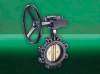 F615 GEM Butterfly Valve -- View Larger Image