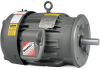 Washdown, 200 & 575 Volt AC Motors -- VM8003T