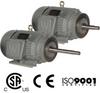 Premium Efficiency Close Coupled Pump Motors, TEFC Premium Efficiency Close Coupled Pump Motors -- PEWWE2-18-145JP -Image
