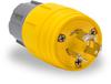 15A Electrical Plug: watertight, locking, NEMA L5-15 -- 24W47BRY