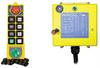 K1/K2  Radio Remote Control - Image