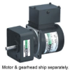 World K Series Induction Motors -- 4ik25gn-fch-4gn5sa