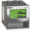 Pro-EC44 Dual Loop Temperature Controller -- View Larger Image