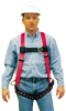 FP Pro Harnesses - w/ tongue buckle leg straps, back D-ring & hip D-rings > SIZE - Standard > UOM - Each -- 10033839 -- View Larger Image