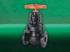 F372 Globe Valve -- View Larger Image