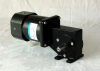 AC Gearmotor YY Series Induction (100 YY) -- 90YY90-1F - Image