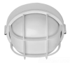 Outdoor Ceiling Light -- BRS-01