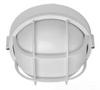 Outdoor Ceiling Light -- BRI-04