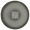 Optics - Lenses -- 711-1029-ND - Image