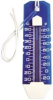 THERMOMETER, POOL -- IBI99-5565