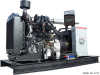 Ford 18 kW Propane/Natural Gas Generator
