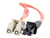Cables to Go patch cable - 33 ft -- 33186