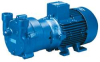Vacuum Pump,Liquid Ring,3.4 HP,32 CFM -- 5MGT1