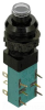 Specialty Pushbutton Switch -- 35-490
