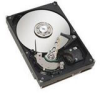 SEAGATE ST31000524AS Barracuda 1TB SATA 6Gb/s Internal Drive -- ST31000524AS