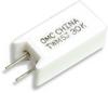 Ceramic Housed Radial Terminal Power Resistor -- TWM/TWW Series -Image