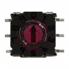 DIP Switches -- P36S101TR-ND
