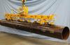 Powered Vacuum Lifter -- E400M6-190-F-SP