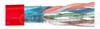 Cat. 5E, PVC Bulk w/Shield, 1,000 ft Reel, 4 Pr. Stranded Red -- TFC2006