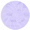 3M 360L Coated Aluminum Oxide Hook & Loop Disc - P600 Grit - 5 in Diameter - 01710 -- 051131-01710