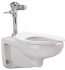 1.28 GPF Manual Wall Bowl System -- Z.WC2.M -Image