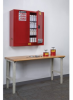 Justrite Aerosol Can Wall-Mount Safety Cabinet -- CAB367