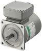 Induction Motor -- 5IK100VA-EST2