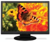 22-Inch AccuSync? Series Widescreen Desktop LCD Display -- ASLCD224WXM-BK