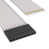 Flat Flex Cables (FFC, FPC) -- A9BAG-1004F-ND -Image