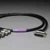 CANARE 8CH DB25 Audio Snake Cable 25-PIN TO 3-PIN XLR FEMALE -- 20DA88202-DB25XJ-100 - Image