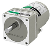 KII Series Induction Motors -- 2ik6ua-9