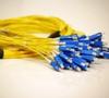 SM Premise Trunk Cables