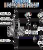 Header -- 551-XX-012-05-001003 - Image