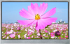 TFT Display -- SCA01810-TFN-LNN - Image