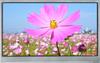 TFT Display -- SCA07030-BFA-LRC