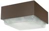 Vandal Resistant Commercial Fixture -- CL400HP120CELPC
