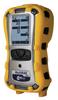 RAE Systems MultiRAE Lite Diffusion PGM-6208D
