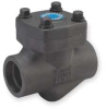 Piston Check Valve,1 In,Socket,Steel -- 1PPN1