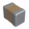 Ceramic Capacitors -- 1761-1076-1-ND - Image