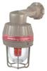 Explosionproof Strobe/Flashing Light Fixture -- ESXR120AB2G - Image