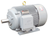 General Purpose Motor -- Y Series