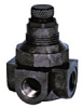Mini Plastic Pressure Regulator -- Series P60 - Image