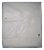 Tarp,Flame Resistant,Polyeth,20x30Ft -- 5WTN4