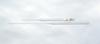 Disposable Pasteur Pipettes, Plain End, Borosilicate Glass, 230 mm; 1000/Cs -- GO-25554-04